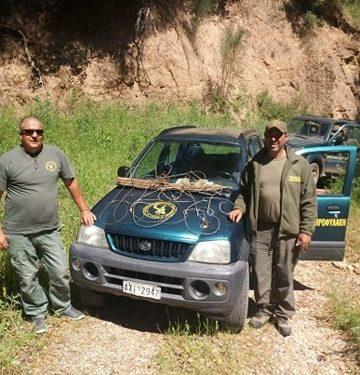 ΔΑΣΑΡΧΕΙΟ ΠΥΡΓΟΥ: Καταστράφηκαν παγίδες – βρόχοι με σκοπό τη σύλληψη αγριόχοιρων από αγνώστους (φωτος)